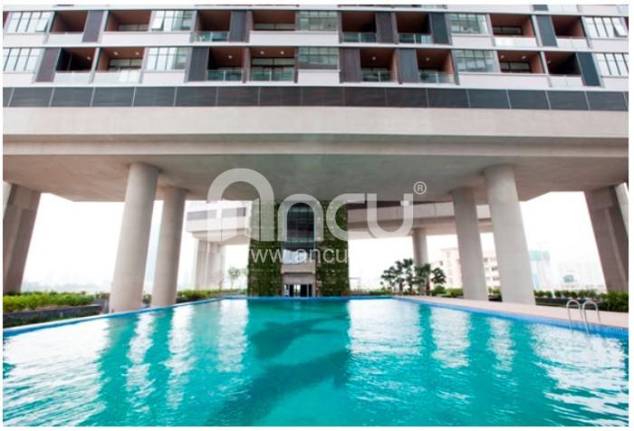 Dolphin plaza - bể bơi ngoài trời